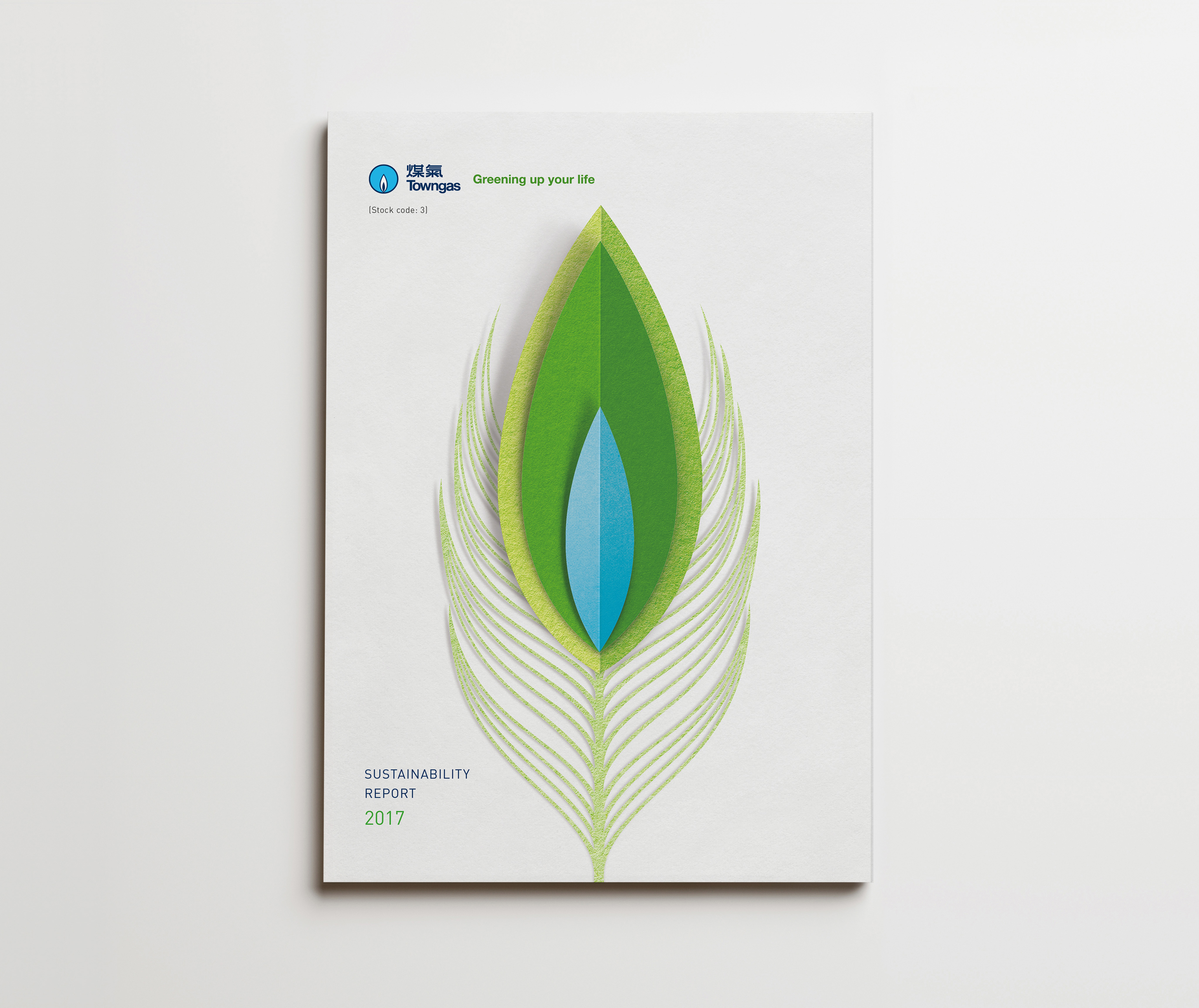 Towngas  Sustainability Report 2017