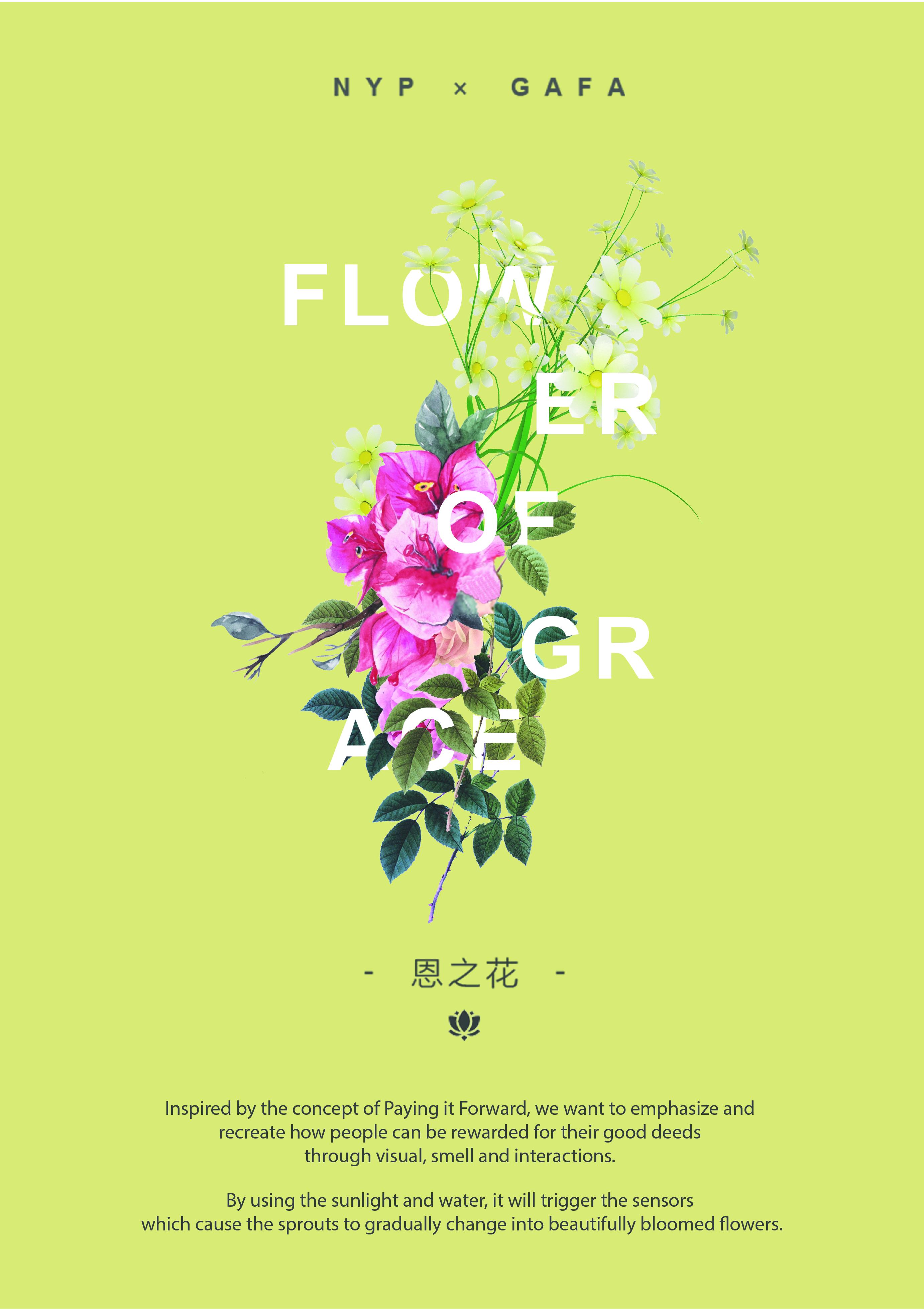 Flower of Grace 恩之花