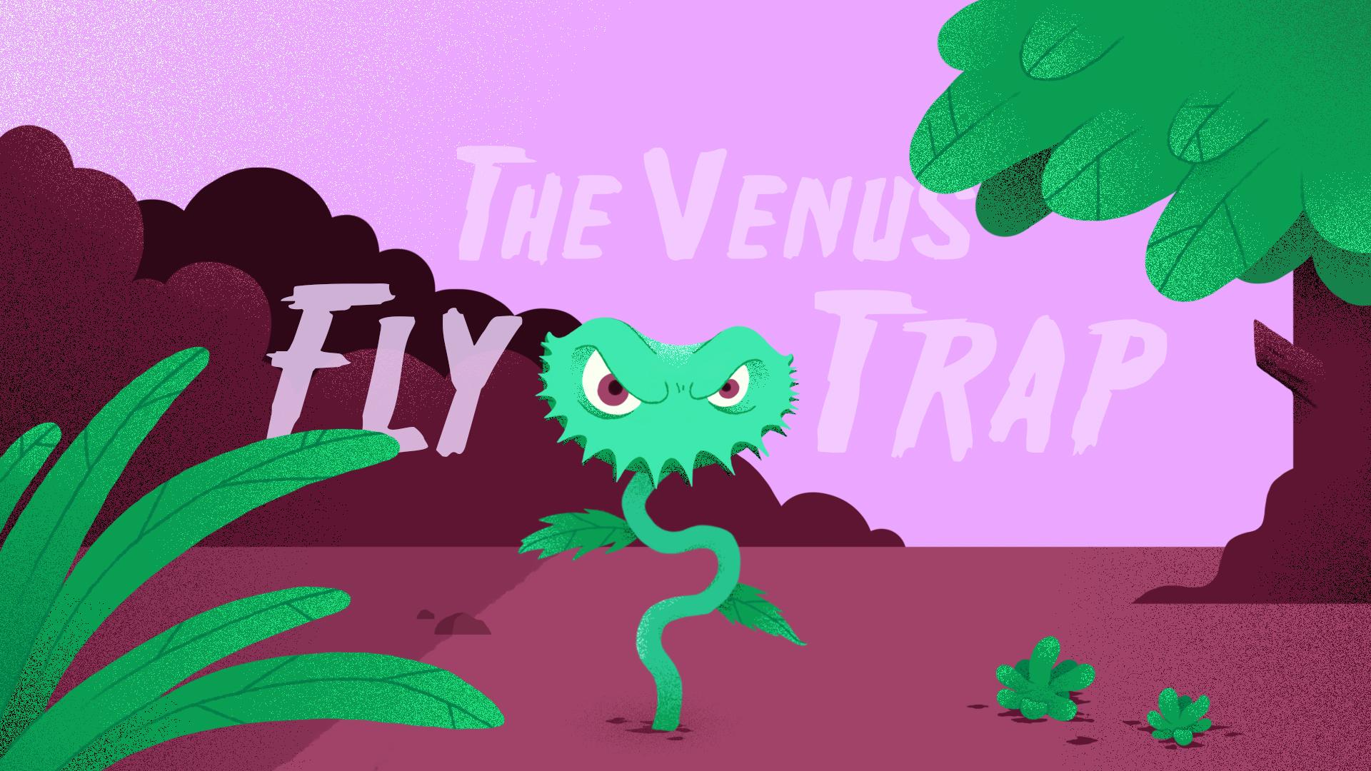 The Venus Flytrap