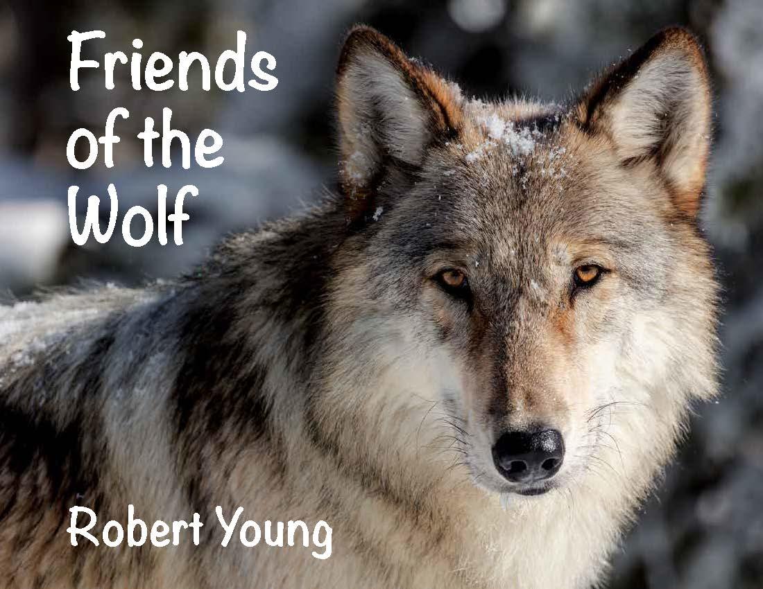 Wolf - Children Book Page Layout