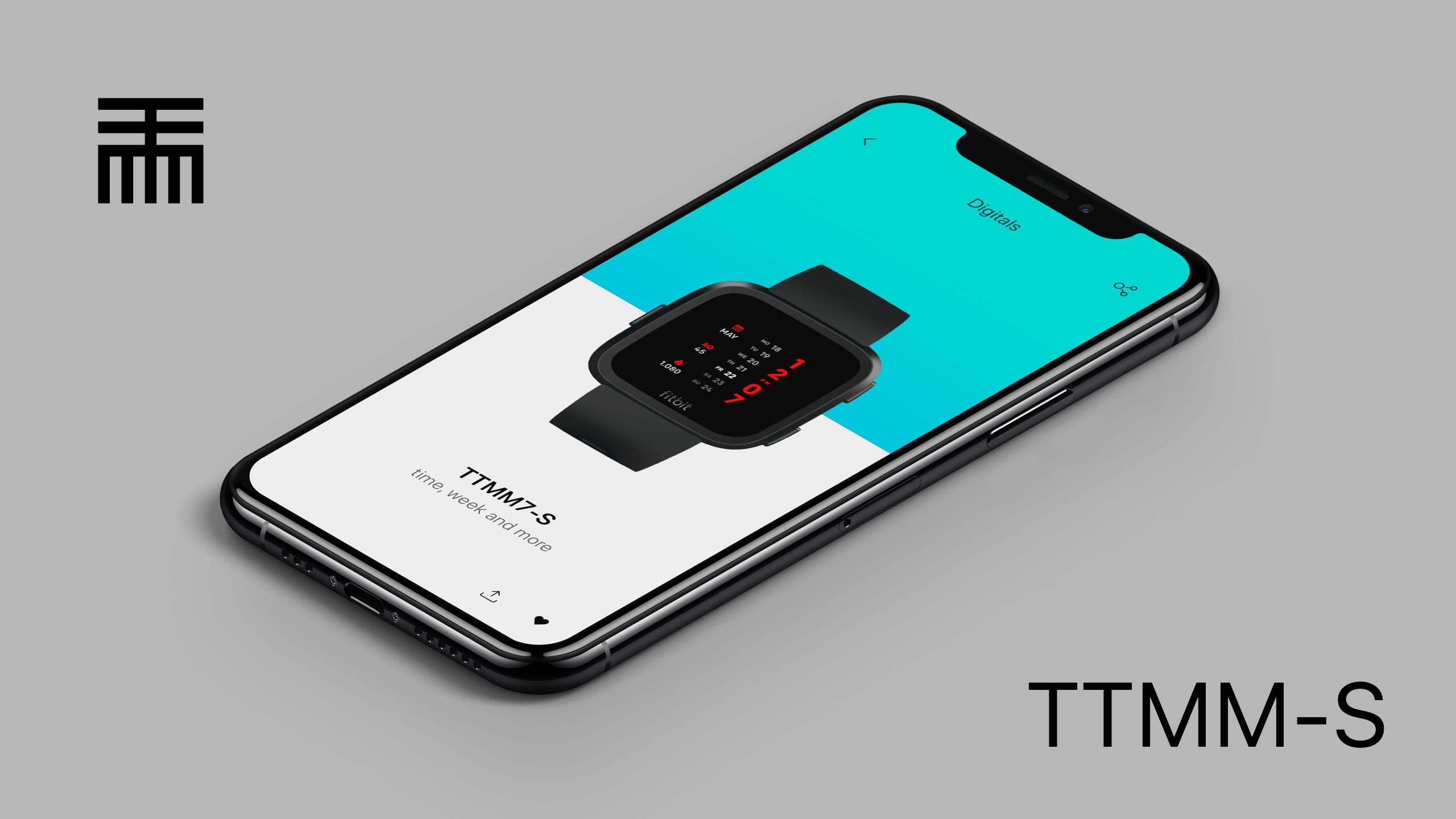 TTMM-S for Fitbit Versa