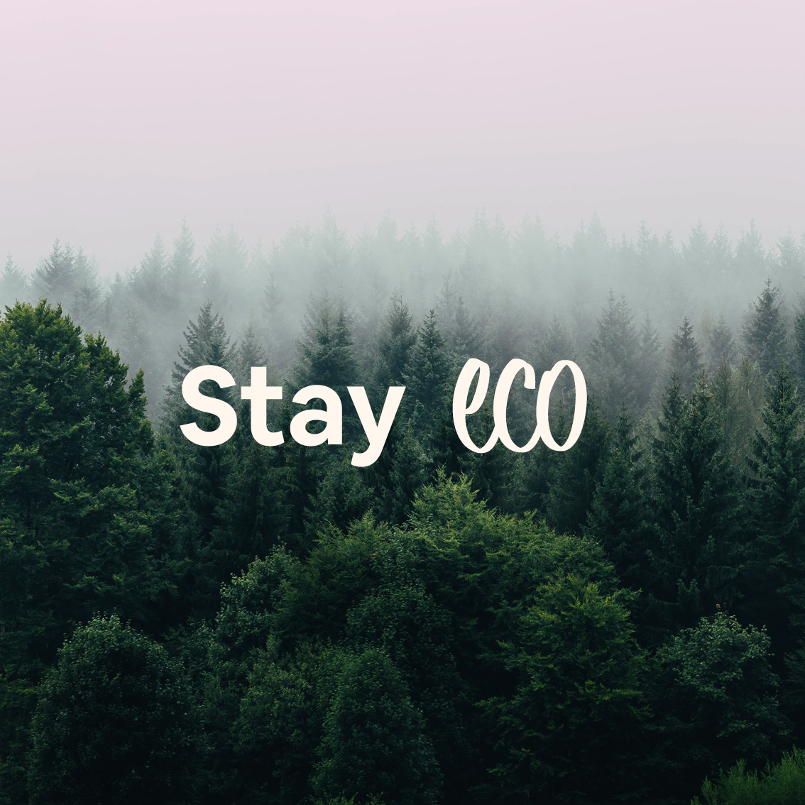 Airbnb Eco