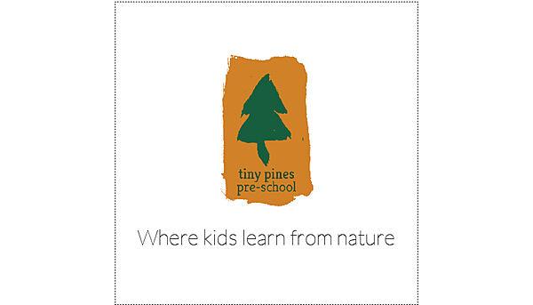 Tiny Pines Elementary (mock up)